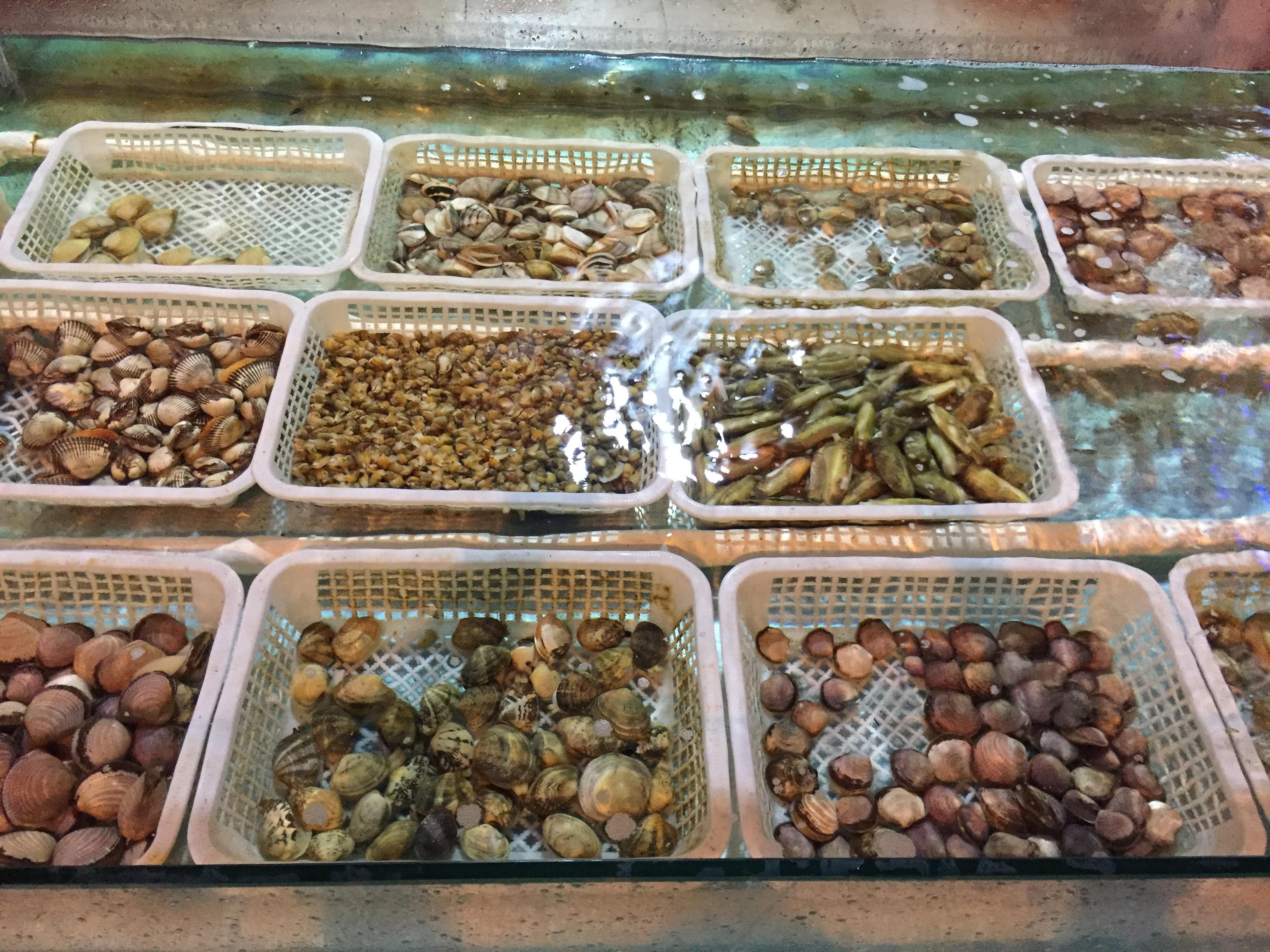 Всевозможные ракушки на восточном рынке ждут гурманов